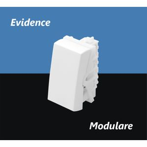 Mod-Inter-2864-3891-Simples-Evidence-Fame